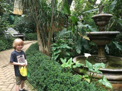 Costa Rica Selvatura Wolfie Butterfly Garden Gimme the Good Stuff