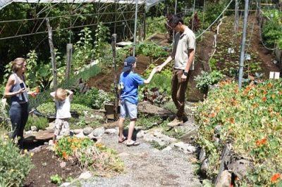 Costa Rica belmar garden tour with Richard