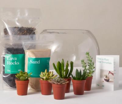 DIY Succulent Terrarium Gimme the Good Stuff