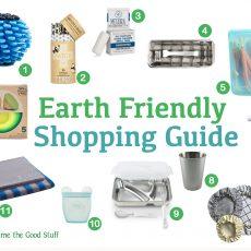 Earth Friendly Guide 2020