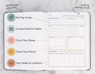 Wellness planner gimme the good stuff