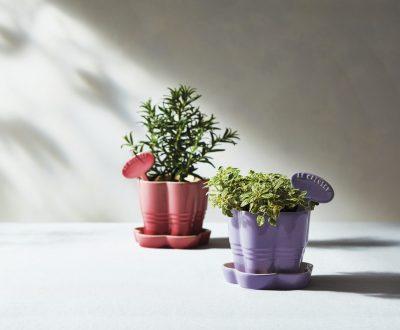 Le Creuset Herb Planters